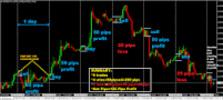 Thumbnail Forex Trading System PIPS