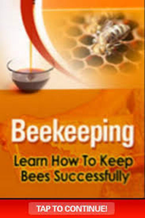 Product picture earn How to Keep Bees Successfully